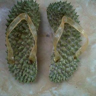 selipar durian